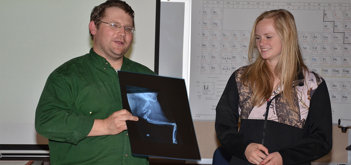 Veterinary instructor with ECC student looking at xray