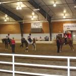 Saddlebred Assn.