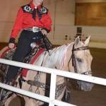 Equestrian Center Show