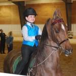 Saddlebred Assn. Show