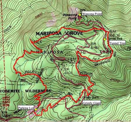 Mariposa Grove of Giant Sequoias Trail Map