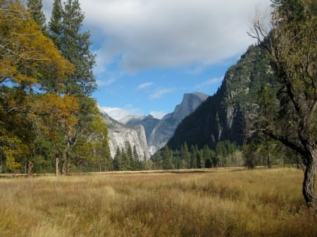 Half Dome Meadow Valley Trail Yosemite