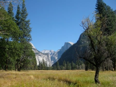 Half Dome Meadow Valley Trail