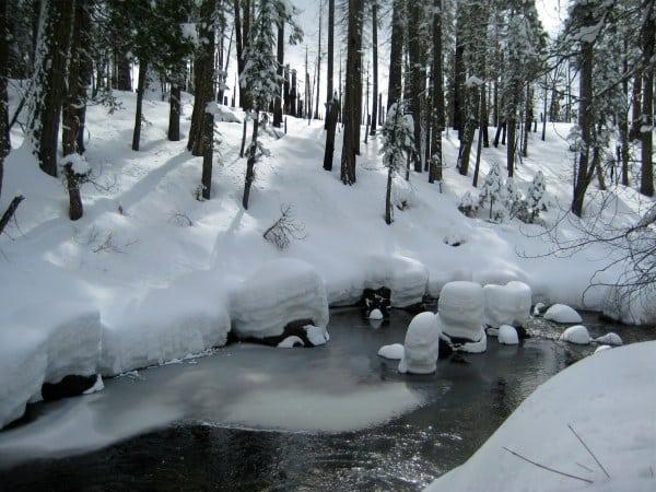 Yosemite Cottonwood Creek winter