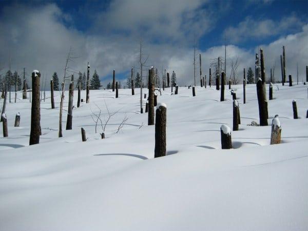 Yosemite Winter Routefinding