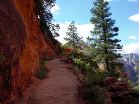 Cliff Cut Trail