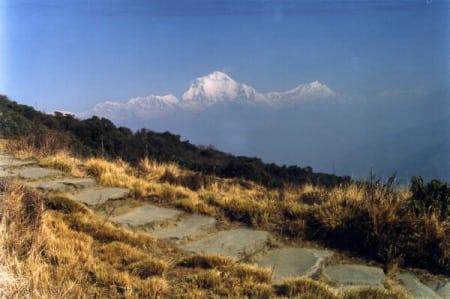 Dhaulagiri Poon Hill Trek Route.