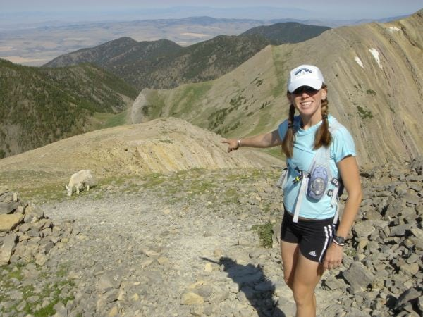 Bridger Mountains goat