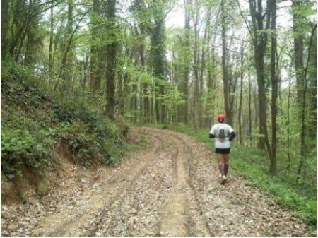 Belgrado Forest trail running