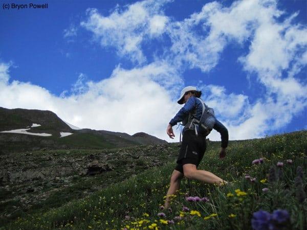 Boulder Gulch wildflowers