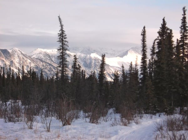 Iditarod Trail Invitational 2012 - Alaska Range