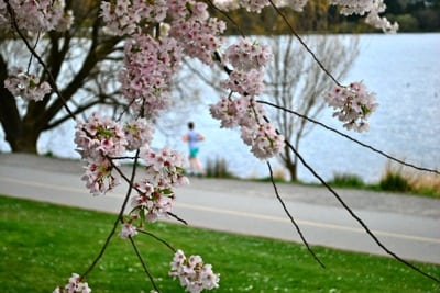 Seattle Trail Running - Greenlake