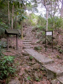 Hong Kong trail running
