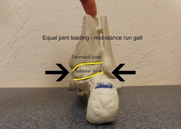 Neutral foot - rear view