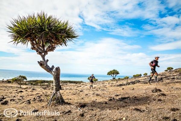 Trail de Rodrigues - vacoa - runners
