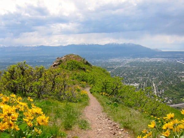 SLC trail running - from Granduer Peak