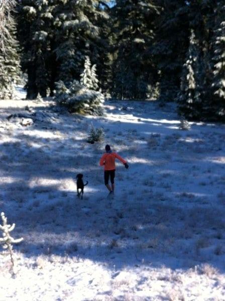 SAD running - dog