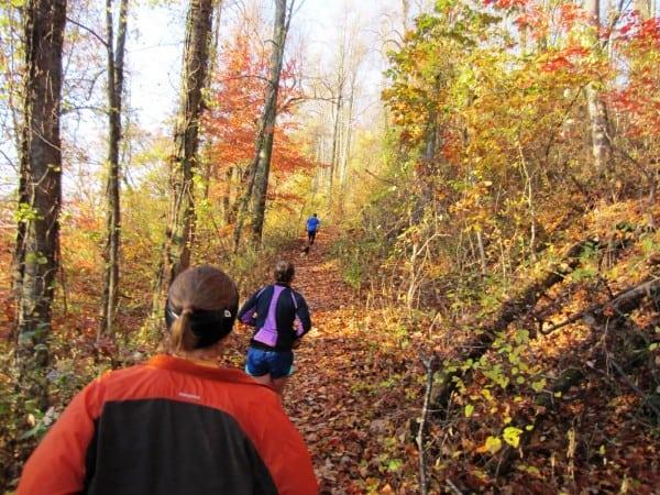 Shut-It Trail - Asheville