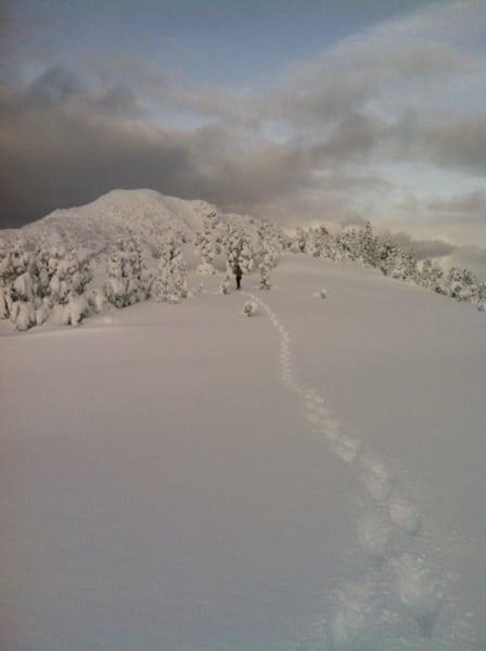 Juneau photo 3