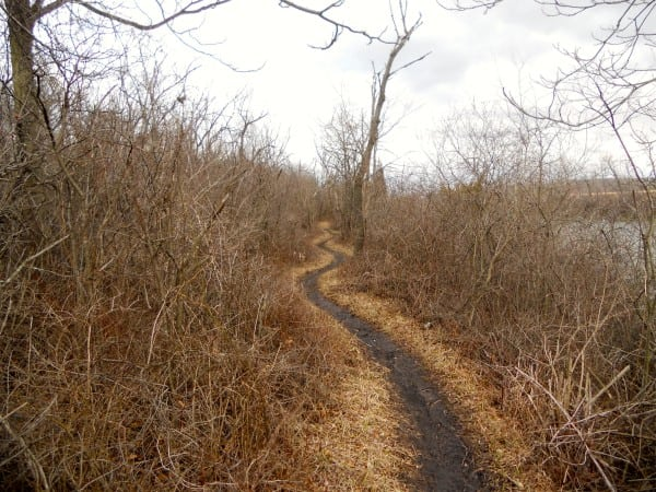 Trail running - Cal-Sag Channel - Chicago