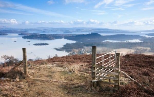 Highland Fling - Gate