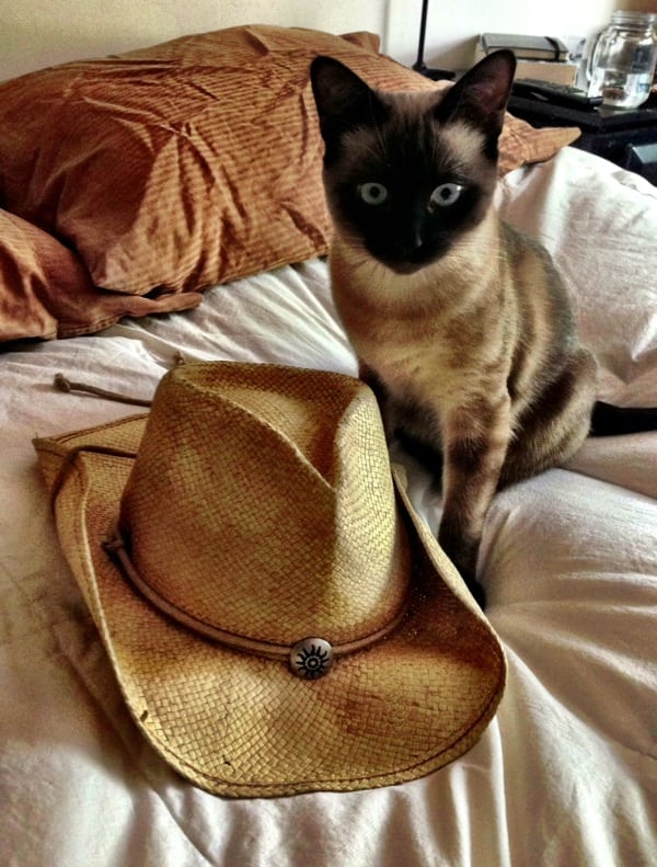 hat on the bed