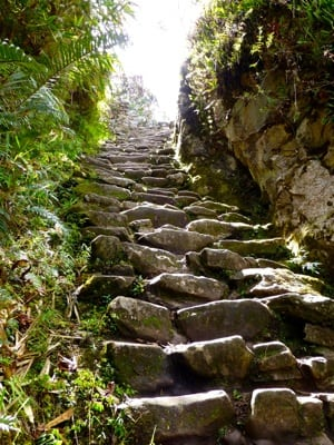Typical Inca paths