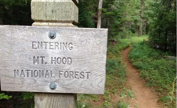Mount Hood sign