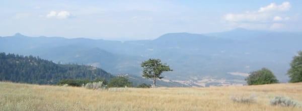 Grassy view - Oregon PCT