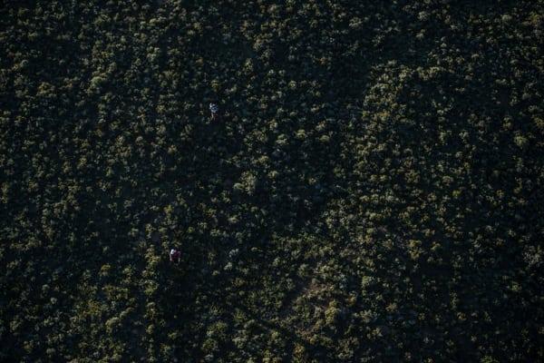 Ryan Sandes-Ryno Griesel-Grand Drakensberg Traverse-bush