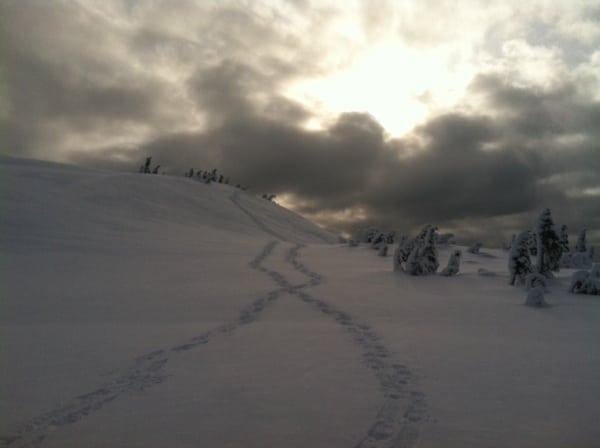 Juneau photo 2