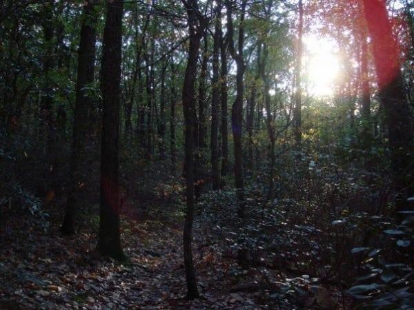 Appalachian Trail - South Mountain - Maryland