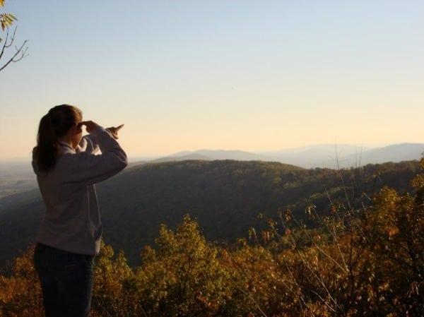 Appalachian Trail - Williamsport