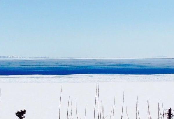 Shawn McTaggart - Iditarod Trail Invitational 6