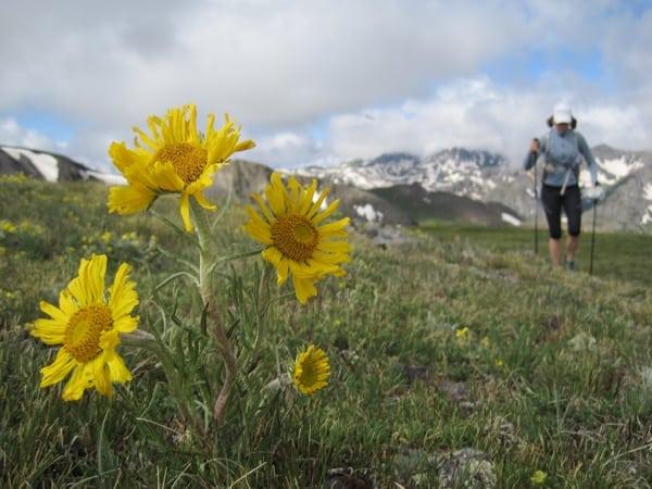 Trail runner Hardrock 100 course