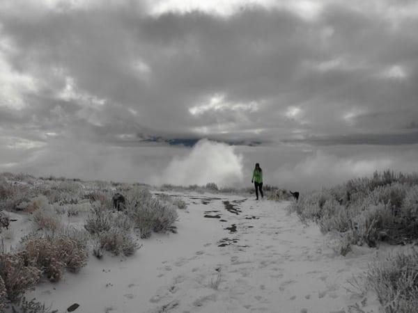 trail runner winter