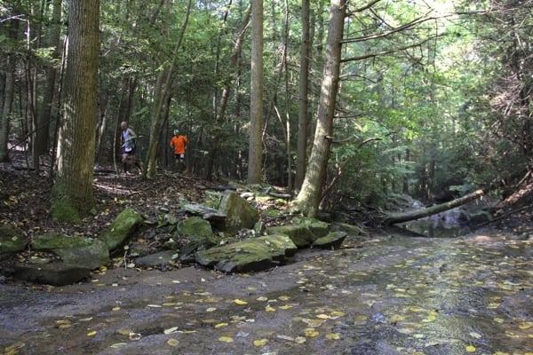 Trail Running in Chattanooga - StumpJump 50k