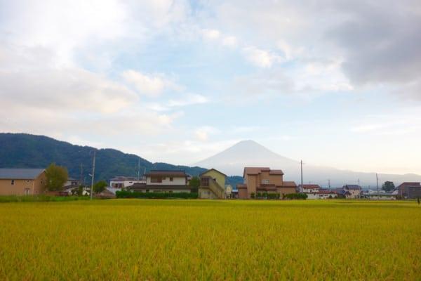 Mount Fuji - 2015 Ultra-Trail Mount Fuji