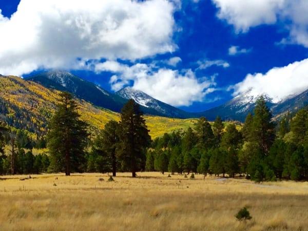 Kachina Peaks Wilderness Area