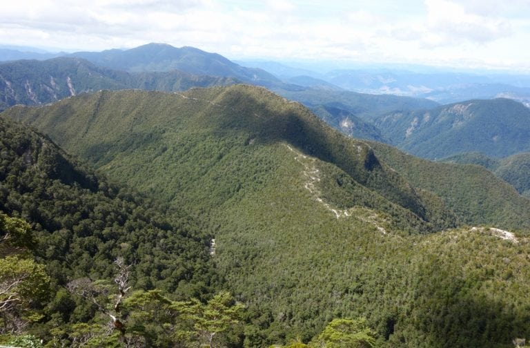 Skyline Ridge on the Old Ghost Road, New Zealand