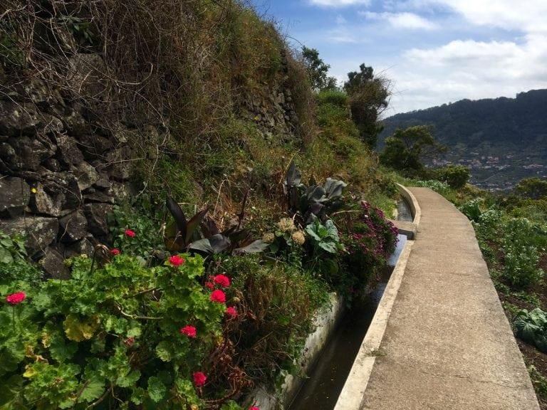Madeira Levada - MIUT