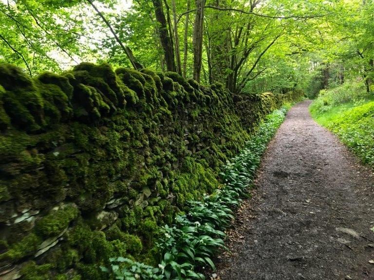 Lake District valley path