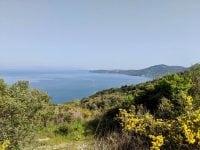 Vacation Racing: Corfu Mountain Trail Ultra Report