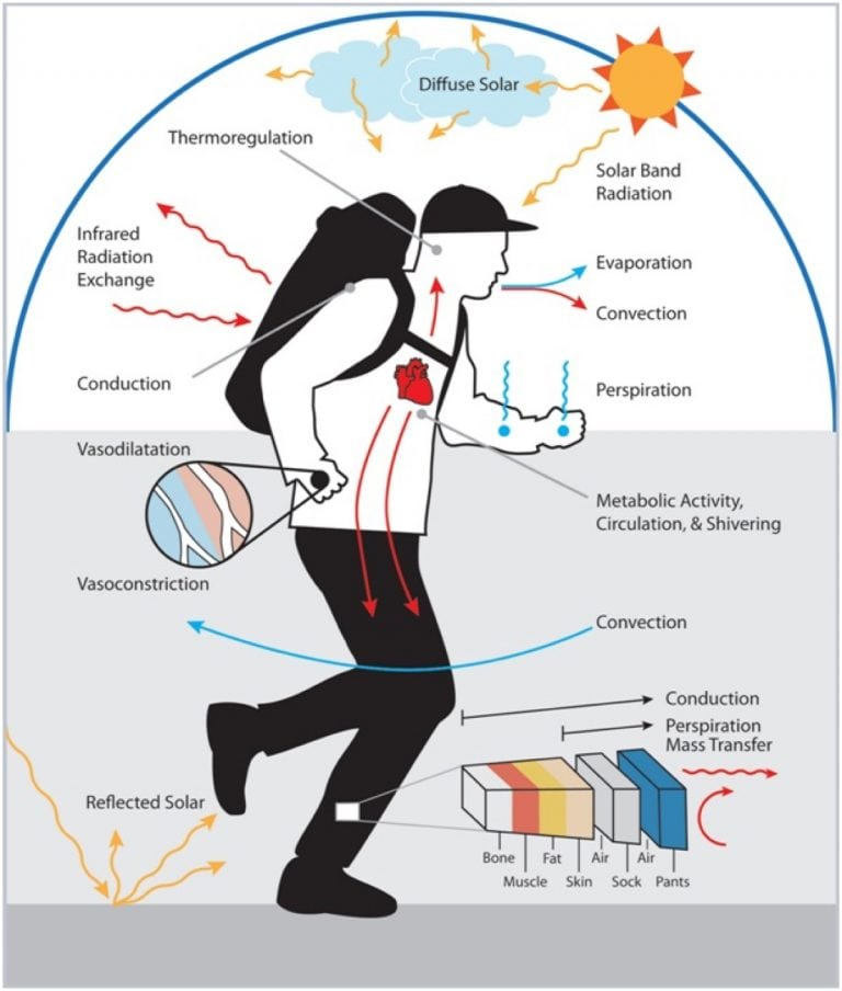 Heat acclimation for endurance running 2