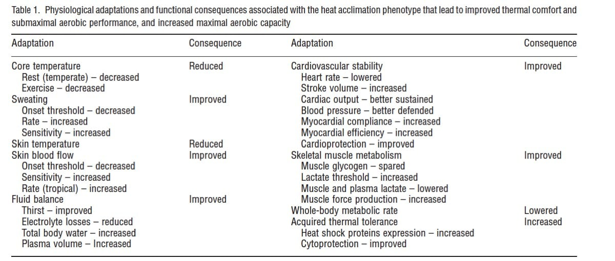 Heat acclimation for endurance running 3