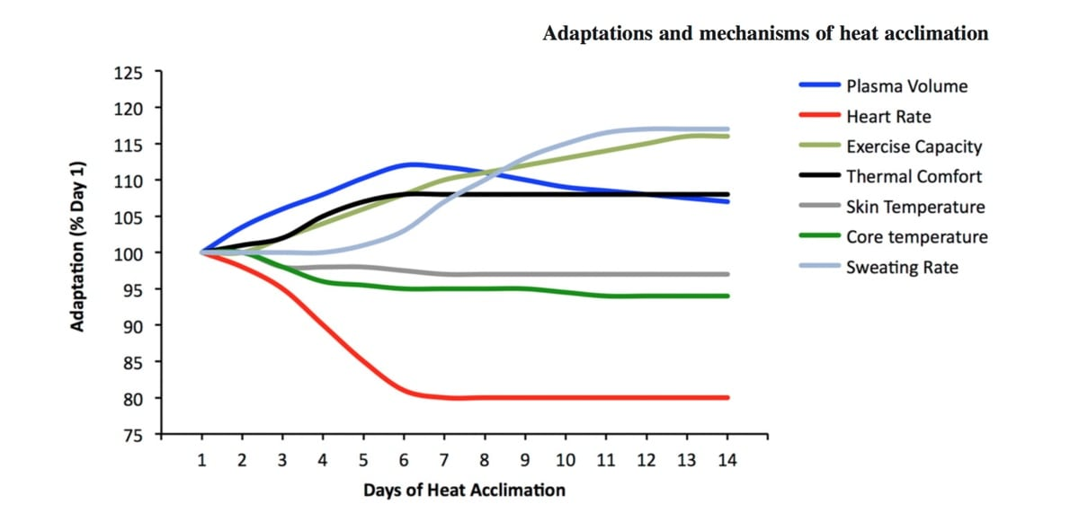 Heat acclimation for endurance running 4