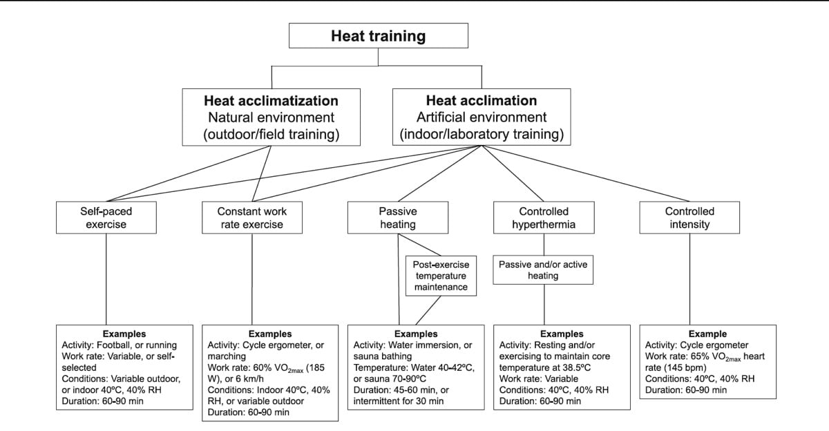 Heat acclimation for endurance running 5