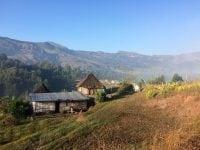 Trail Running in East Timor