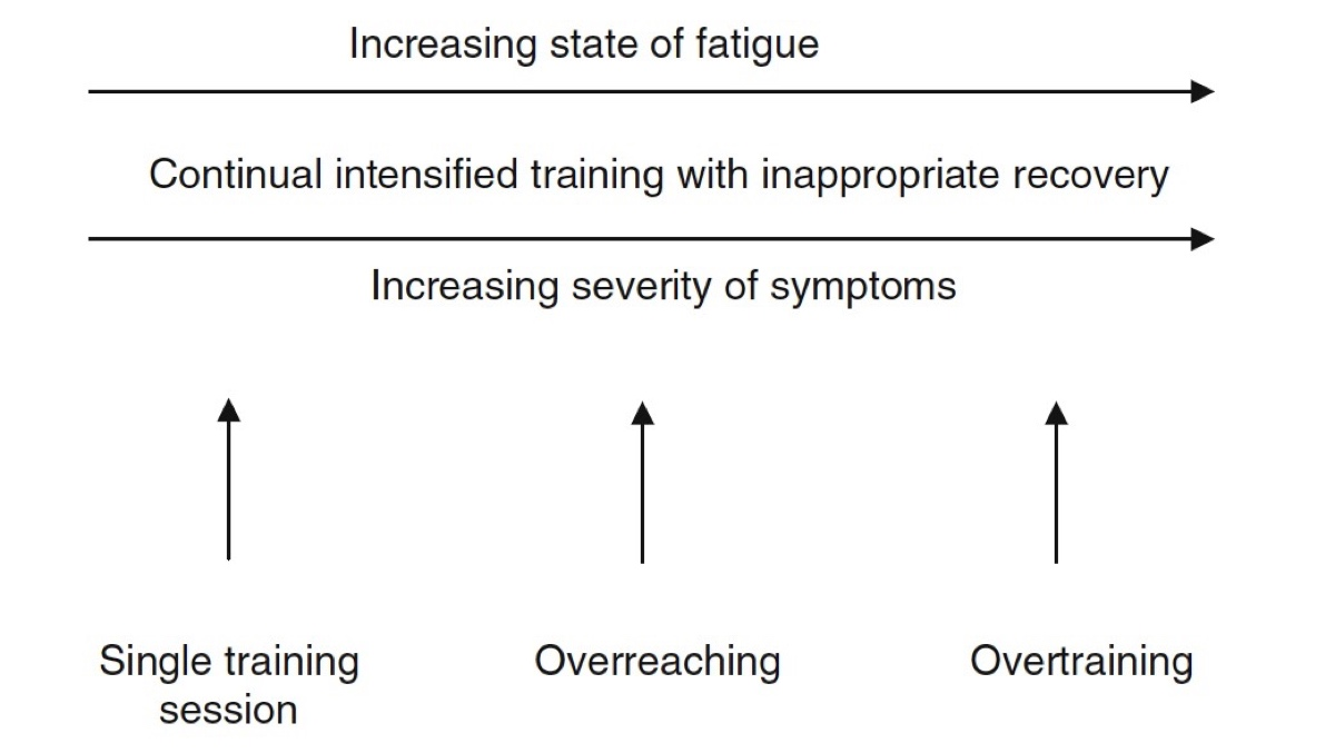 Beyond Fatigue: Understanding Overtraining Syndrome