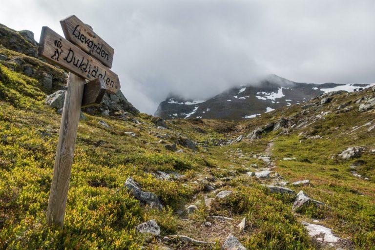 Stranda Fjord Trail Race - 4